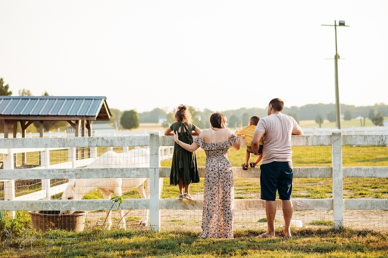 Family Photos 2019 (10 of 12).jpg